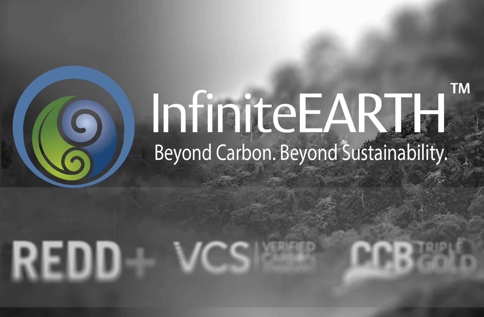 InfiniteEARTH offers Triple Gold Certified REDD+ Carbon Credits to individuals and corporate interests looking to accomplish a zero-carbon-footprint mitigation rating